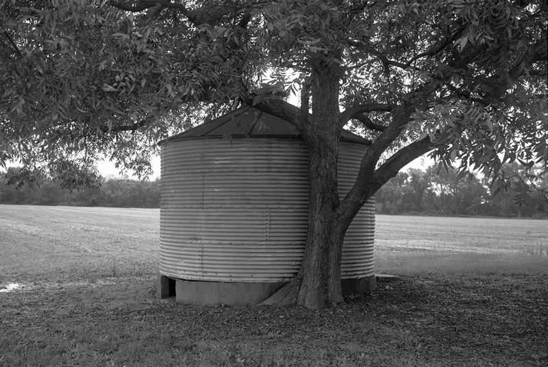 Quitman County, Mississippi, 2009