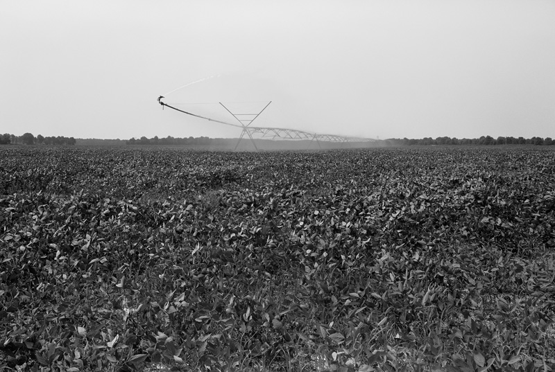 Sunflower County, Mississippi, 2011
