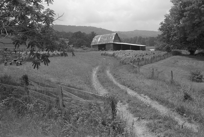 Willis, Virginia, 2011
